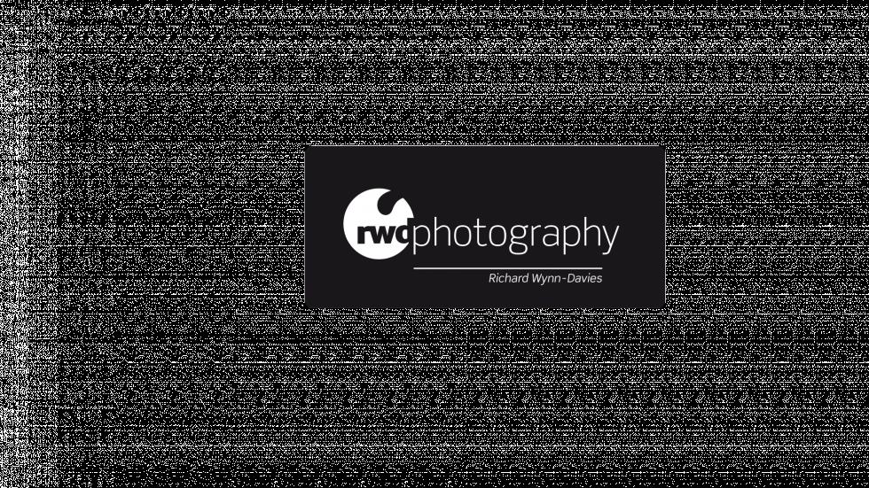 SMD_ID_Logos_Richard